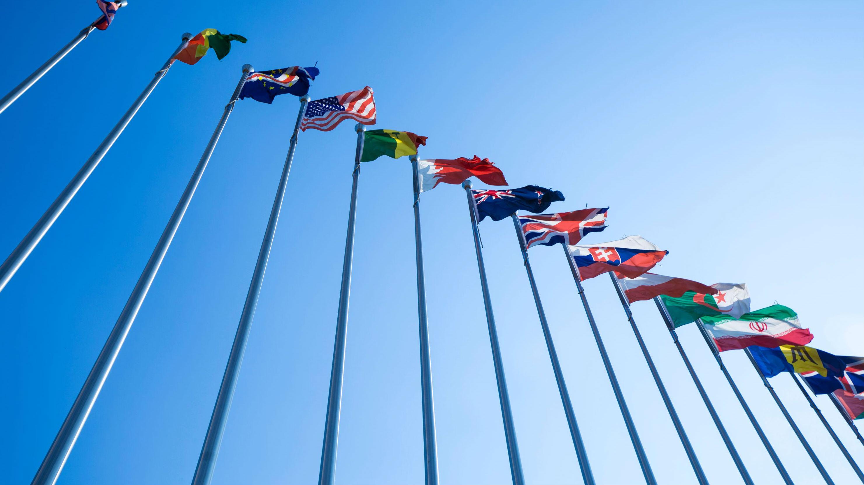 International & Comparative Legal Studies Program