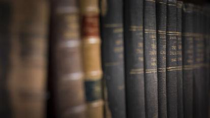 Legal Language Programs