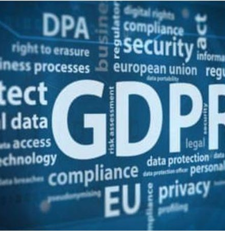 Data Privacy Adjudication and the EU Digital Single Market