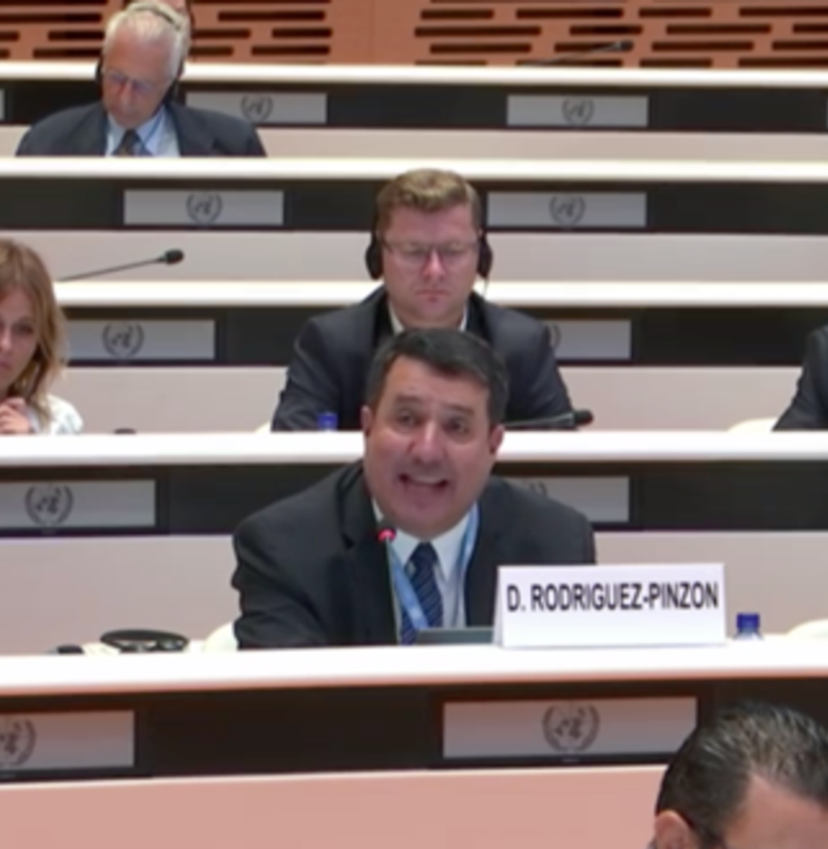 Profesor Diego Rodríguez-Pinzón participó en la 67ª sesión del Comité contra la Tortura de la ONU