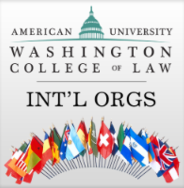 International Organizations, Law and Diplomacy Information Session