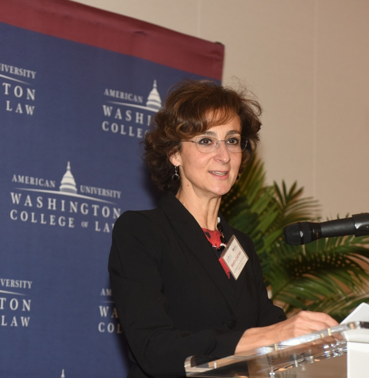 AUWCL Hosts 2017 Annual Meeting of the American Society of Comparative Law